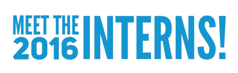 Meet the Interns: Part 2