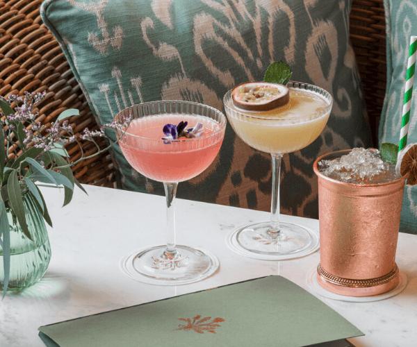 Linnaean venue cocktails